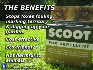 I Scoot Fox Repellent